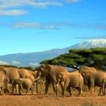 Visitare il Kenya per vacanza